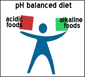 essay on importance of balance diet Importance of a balanced diet free essay help and writing assignment the importance of balanced diet for keeping good health balance diet is essential for.