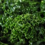 kale-snack