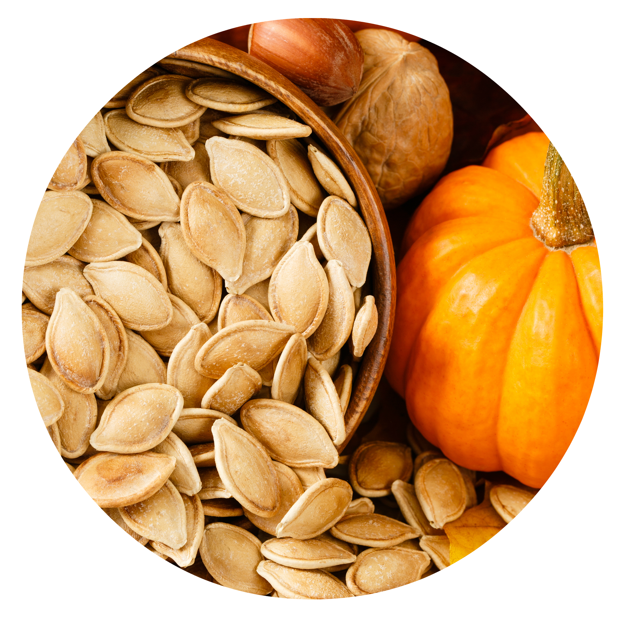 circle pumpkin seeds