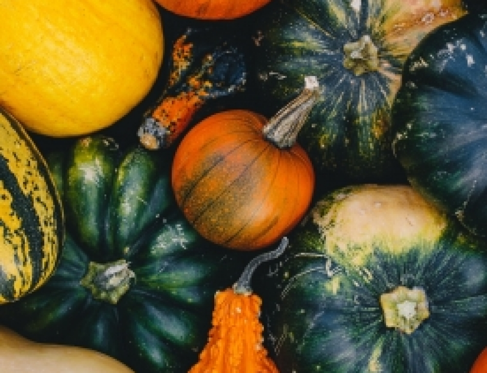 My Favorite Autumn Foods That Naturally Ground You