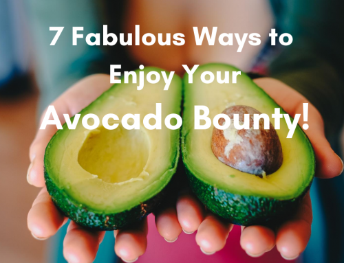 7 Ways to Enjoy Your Avocado Bounty